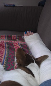 Pippin loves my cast.